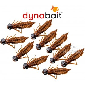 Сушени нимфи Dynabait Fresh Nimphs - Бабалюга