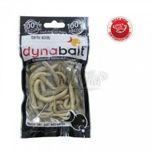 Сушени земни червеи Dynabait Dried Earth Worms